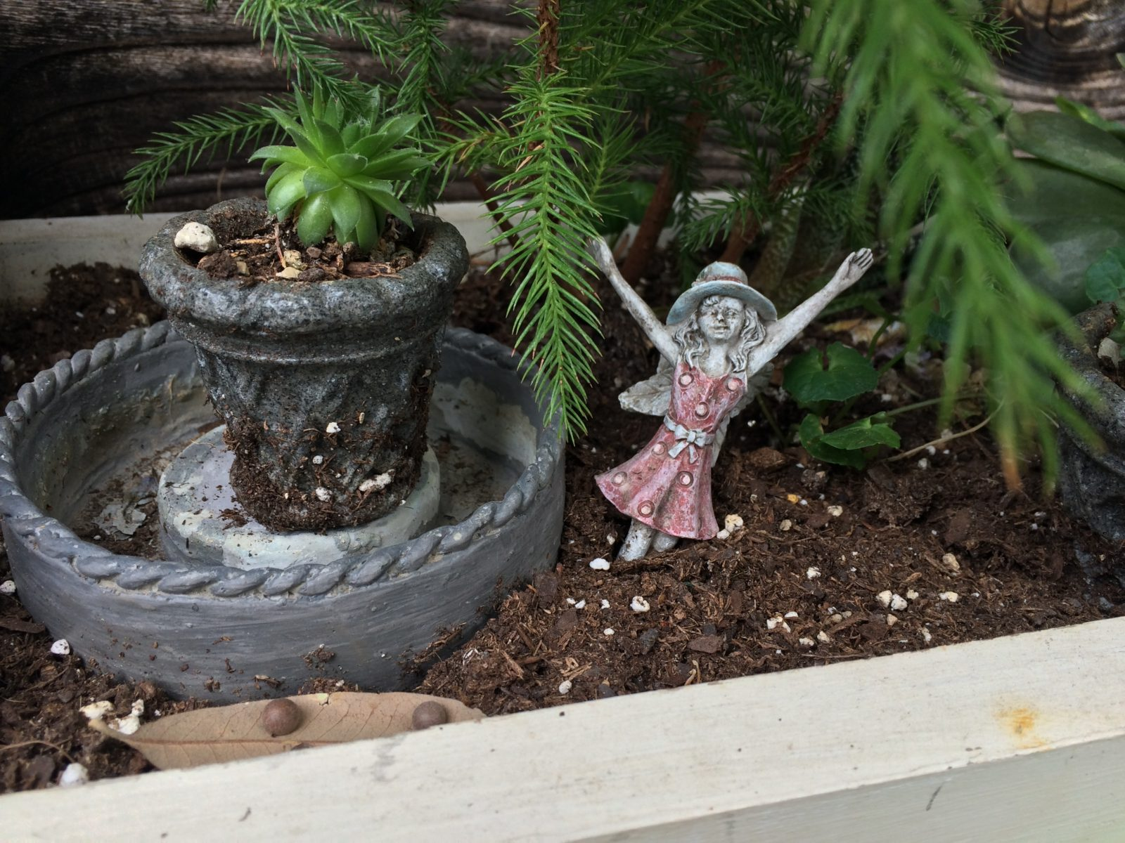 Wimberley Market Days Fairy Garden In the Garden With Dinah Old Factory Soap Company